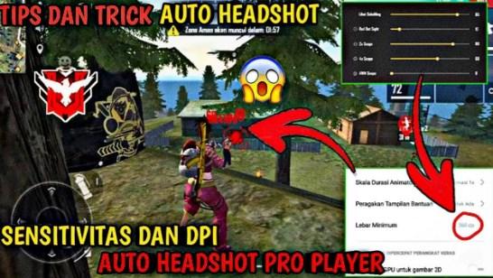 DPI FF Auto Headshot Pro Player